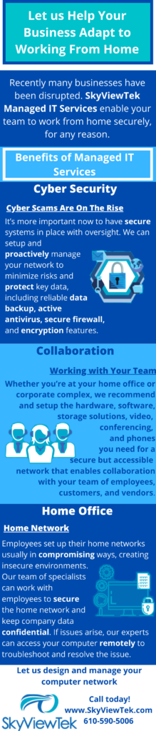 Infographic about the Benefits of SkyViewTek Managed IT Services