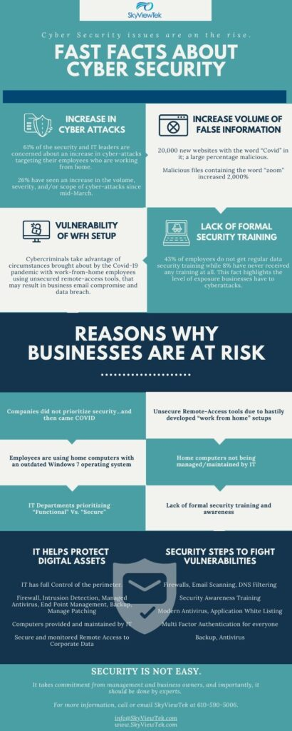 SkyViewTek Infographic | Reasons Why Businesses are at Risk | Cyber Security Companies